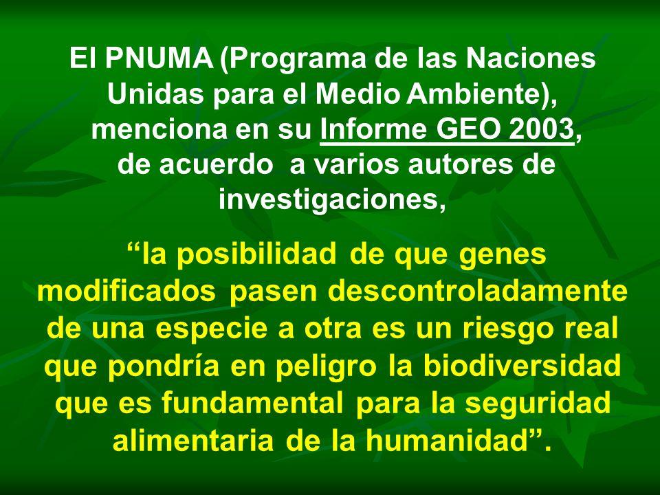 El PNUMA (Programa de las Naciones Unidas para el Medio Ambiente), menciona en su Informe GEO 2003, de acuerdo a varios autores de investigaciones, la