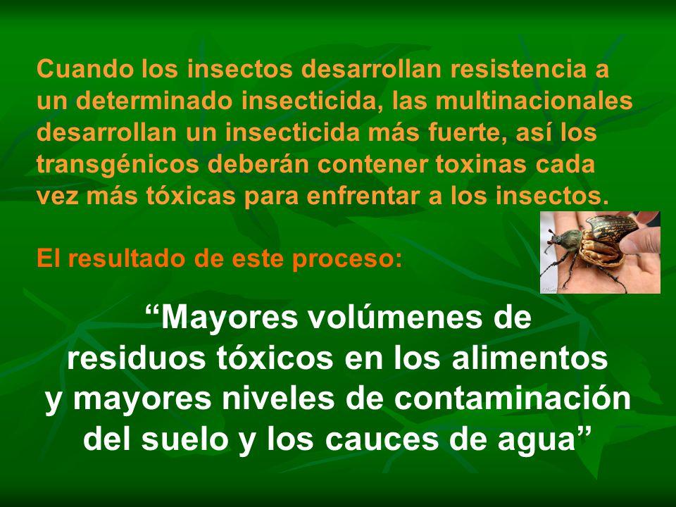 Cuando los insectos desarrollan resistencia a un determinado insecticida, las multinacionales desarrollan un insecticida más fuerte, así los transgénicos deberán contener toxinas cada vez más tóxicas para enfrentar a los insectos.