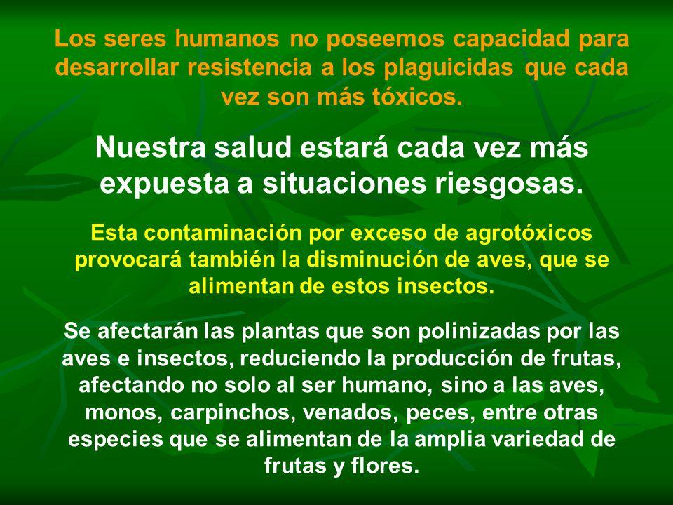 Los seres humanos no poseemos capacidad para desarrollar resistencia a los plaguicidas que cada vez son más tóxicos.