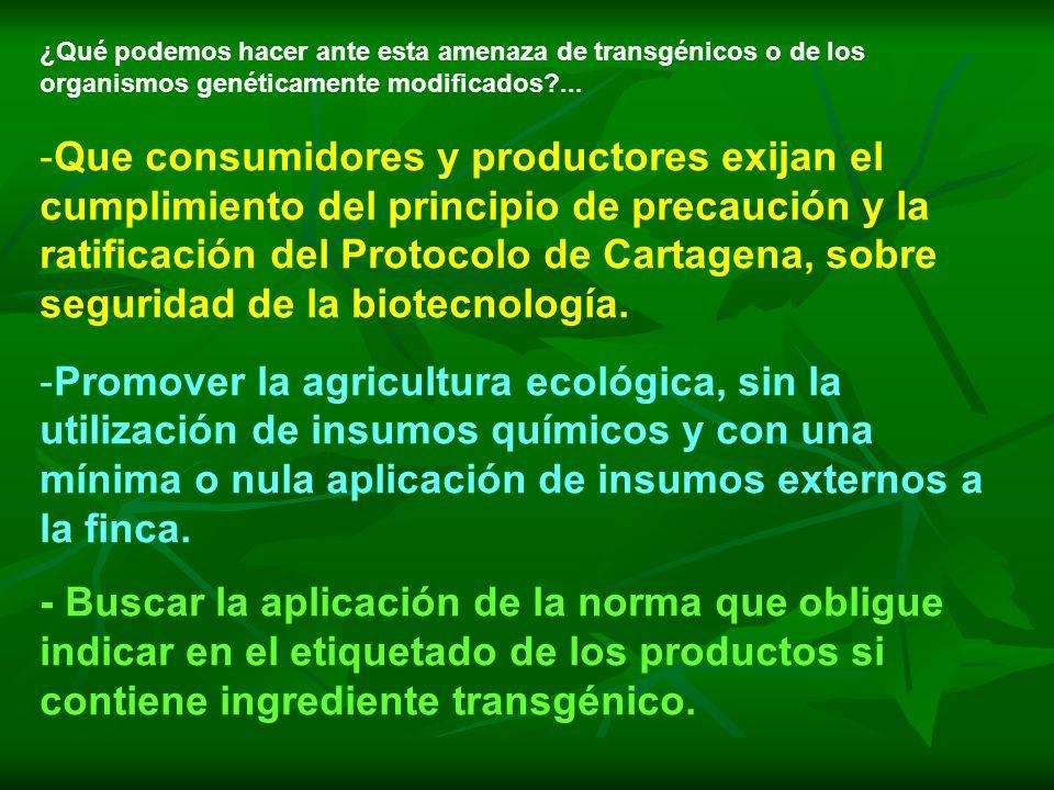 ¿Qué podemos hacer ante esta amenaza de transgénicos o de los organismos genéticamente modificados?... -Que consumidores y productores exijan el cumpl