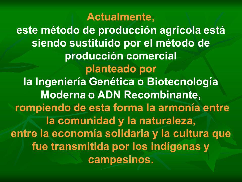 Actualmente, este método de producción agrícola está siendo sustituido por el método de producción comercial planteado por la Ingeniería Genética o Bi