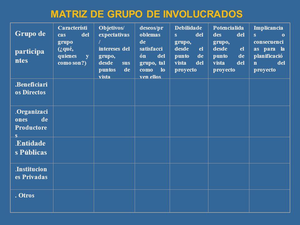 Grupo de participa ntes Característi cas del grupo (¿qué, quienes y como son?) Objetivos/ expectativas / intereses del grupo, desde sus puntos de vist
