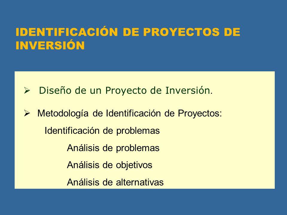 IDENTIFICACIÓN DE PROYECTOS DE INVERSIÓN Diseño de un Proyecto de Inversión. Metodología de Identificación de Proyectos: Identificación de problemas A