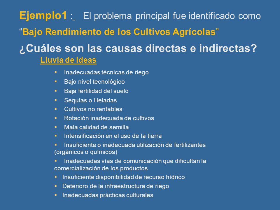 Ejemplo1 : El problema principal fue identificado como Bajo Rendimiento de los Cultivos Agrícolas ¿Cuáles son las causas directas e indirectas.