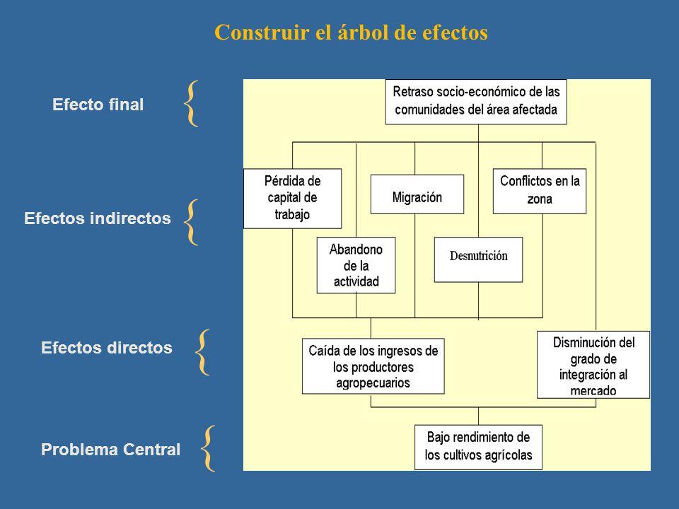 Construir el árbol de efectos { { { { Problema Central Efectos directos Efectos indirectos Efecto final