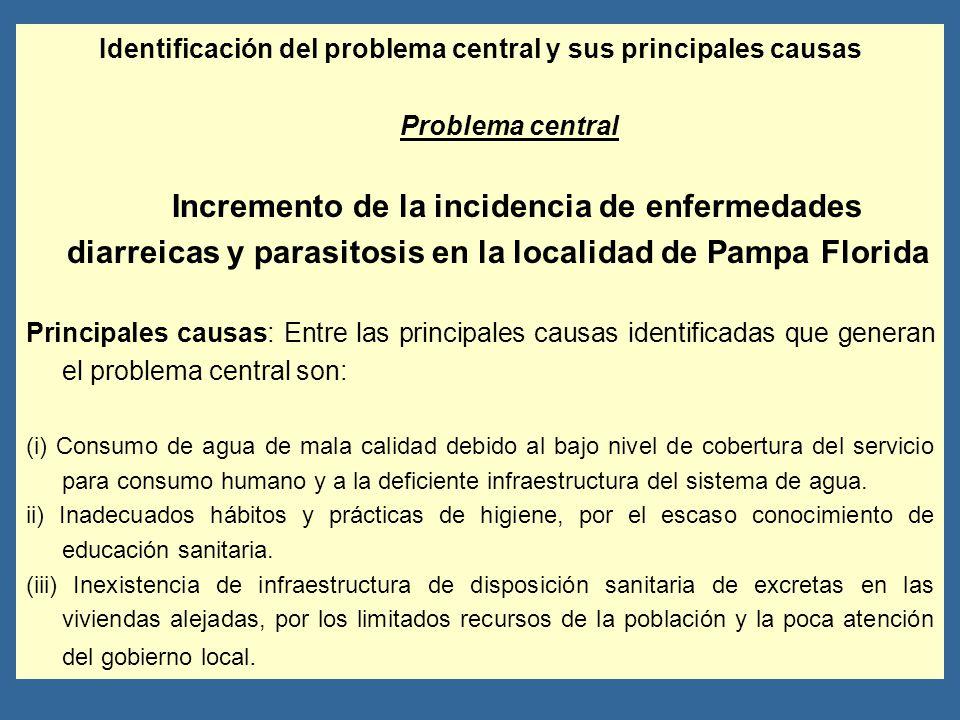 Identificación del problema central y sus principales causas Problema central Incremento de la incidencia de enfermedades diarreicas y parasitosis en