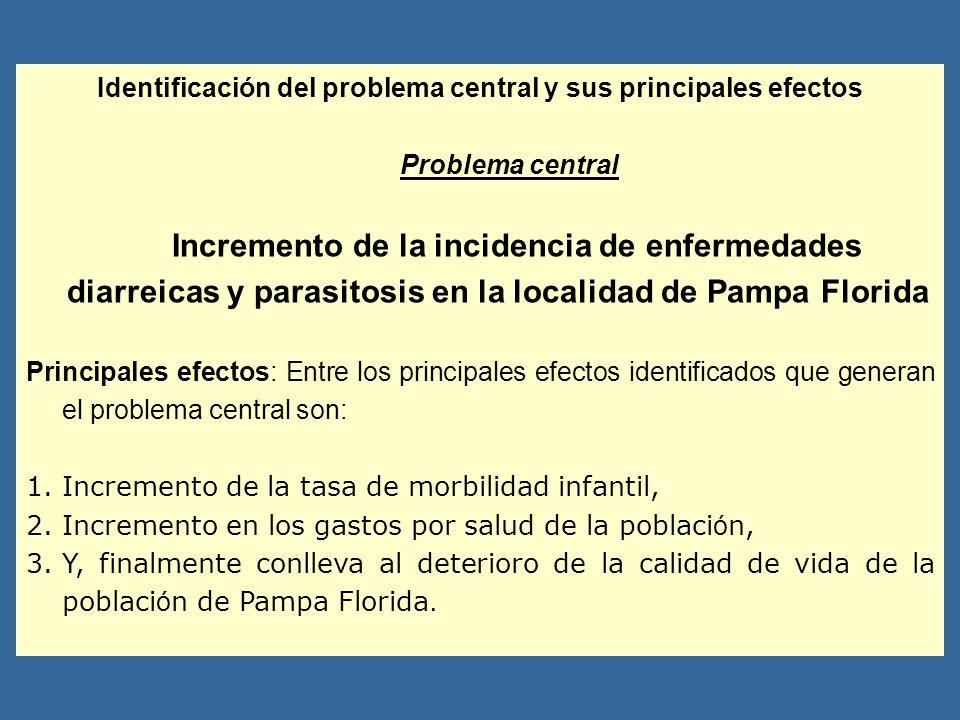 Identificación del problema central y sus principales efectos Problema central Incremento de la incidencia de enfermedades diarreicas y parasitosis en