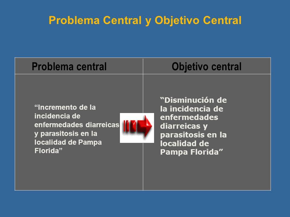 Problema centralObjetivo central Problema Central y Objetivo Central Disminución de la incidencia de enfermedades diarreicas y parasitosis en la local