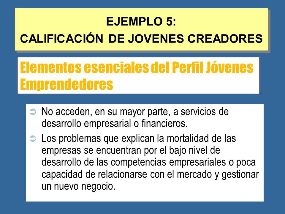 Elementos esenciales del Perfil Jóvenes Emprendedores No acceden, en su mayor parte, a servicios de desarrollo empresarial o financieros.