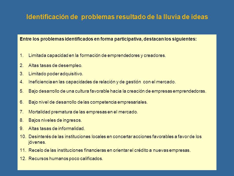 Identificación de problemas resultado de la lluvia de ideas Entre los problemas identificados en forma participativa, destacan los siguientes: 1.Limit