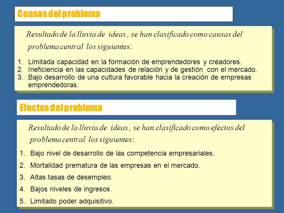 Causas del problema Resultado de la lluvia de ideas, se han clasificado como causas del problema central los siguientes : 1.Limitada capacidad en la f