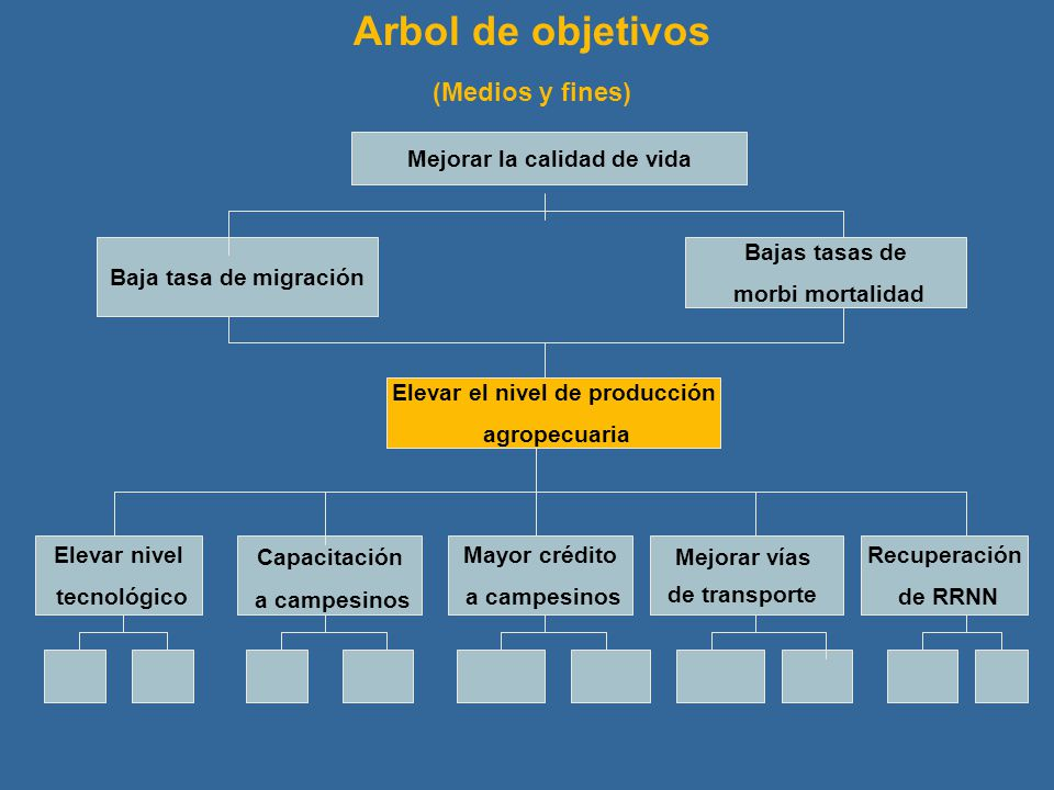 Mejorar la calidad de vida Baja tasa de migración Bajas tasas de morbi mortalidad Elevar el nivel de producción agropecuaria Elevar nivel tecnológico
