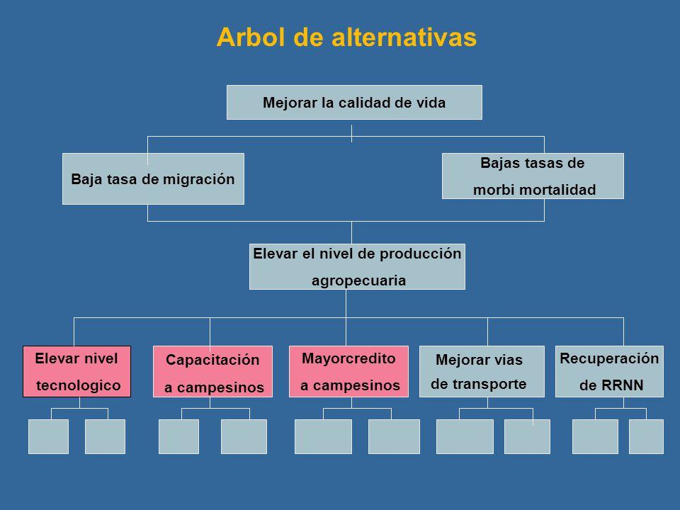 Mejorar la calidad de vida Baja tasa de migración Bajas tasas de morbi mortalidad Elevar el nivel de producción agropecuaria Elevar nivel tecnologico