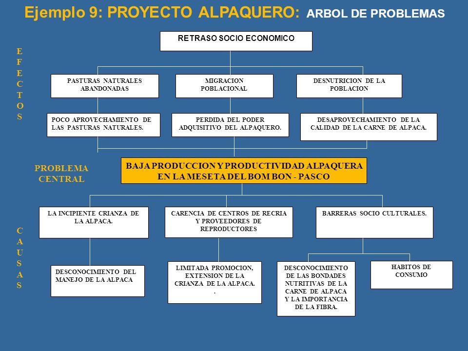RETRASO SOCIO ECONOMICO PASTURAS NATURALES ABANDONADAS MIGRACION POBLACIONAL DESNUTRICION DE LA POBLACION POCO APROVECHAMIENTO DE LAS PASTURAS NATURAL