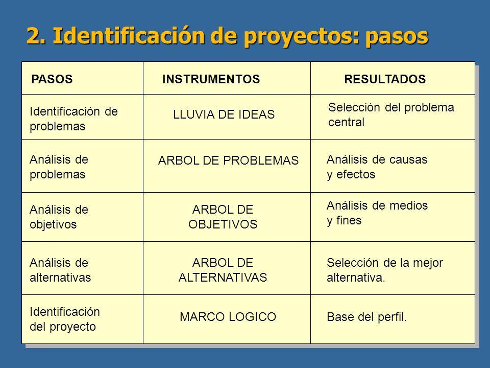 2. Identificación de proyectos: pasos PASOSINSTRUMENTOSRESULTADOS Identificación de problemas LLUVIA DE IDEAS Selección del problema central Análisis