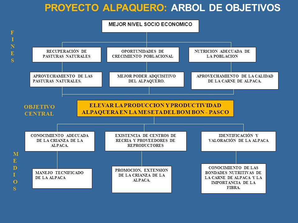 MEJOR NIVEL SOCIO ECONOMICO RECUPERACIÓN DE PASTURAS NATURALES OPORTUNIDADES DE CRECIMIENTO POBLACIONAL NUTRICION ADECUADA DE LA POBLACION APROVECHAMI
