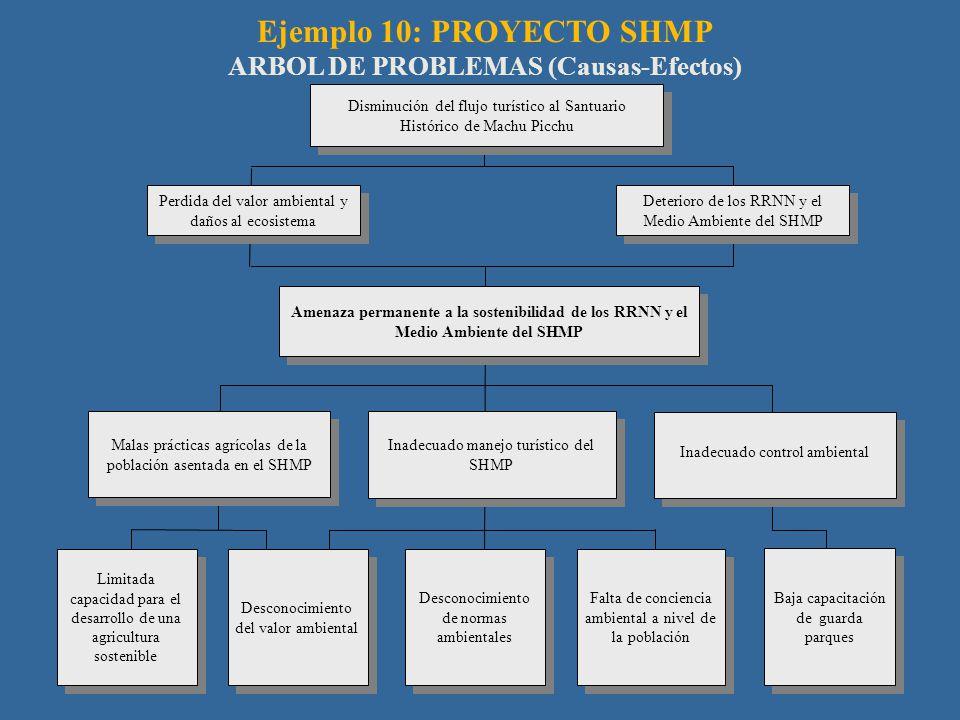 Ejemplo 10: PROYECTO SHMP ARBOL DE PROBLEMAS (Causas-Efectos) Perdida del valor ambiental y daños al ecosistema Amenaza permanente a la sostenibilidad de los RRNN y el Medio Ambiente del SHMP Malas prácticas agrícolas de la población asentada en el SHMP Falta de conciencia ambiental a nivel de la población Desconocimiento de normas ambientales Inadecuado manejo turístico del SHMP Disminución del flujo turístico al Santuario Histórico de Machu Picchu Limitada capacidad para el desarrollo de una agricultura sostenible Deterioro de los RRNN y el Medio Ambiente del SHMP Desconocimiento del valor ambiental Inadecuado control ambiental Baja capacitación de guarda parques