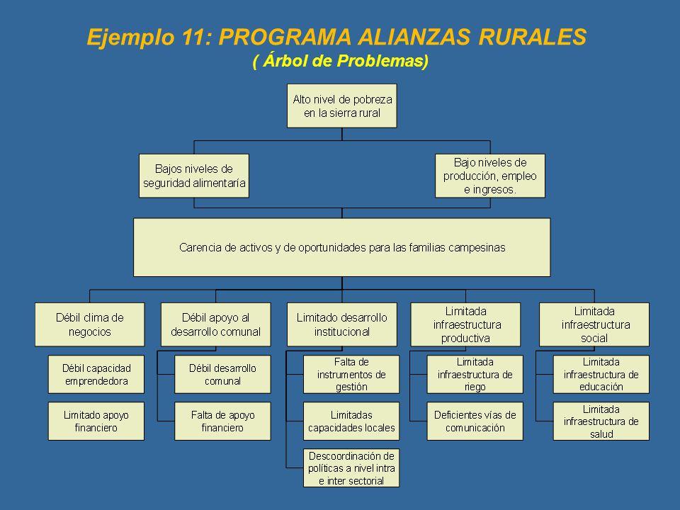 Ejemplo 11: PROGRAMA ALIANZAS RURALES ( Árbol de Problemas)