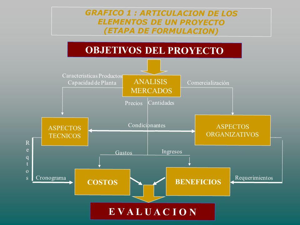 GRAFICO 1 : ARTICULACION DE LOS ELEMENTOS DE UN PROYECTO (ETAPA DE FORMULACION) ANALISIS MERCADOS ASPECTOS TECNICOS ASPECTOS ORGANIZATIVOS BENEFICIOS