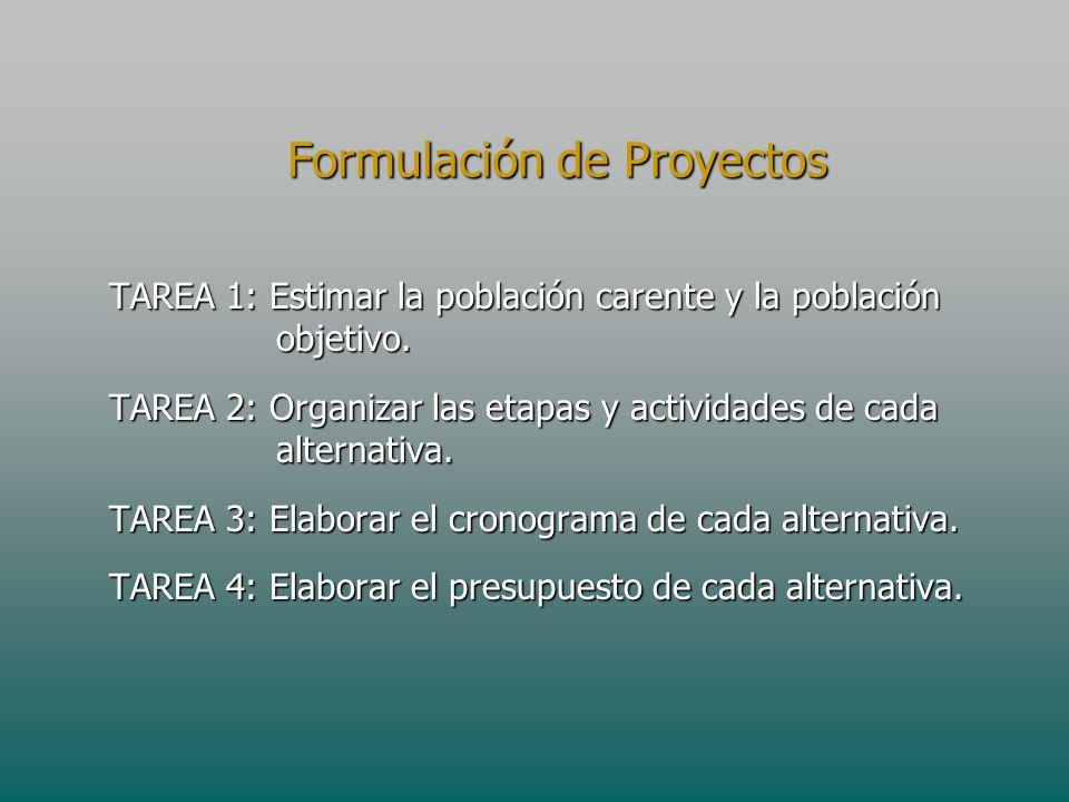 Formulación de Proyectos TAREA 1: Estimar la población carente y la población objetivo. TAREA 2: Organizar las etapas y actividades de cada alternativ