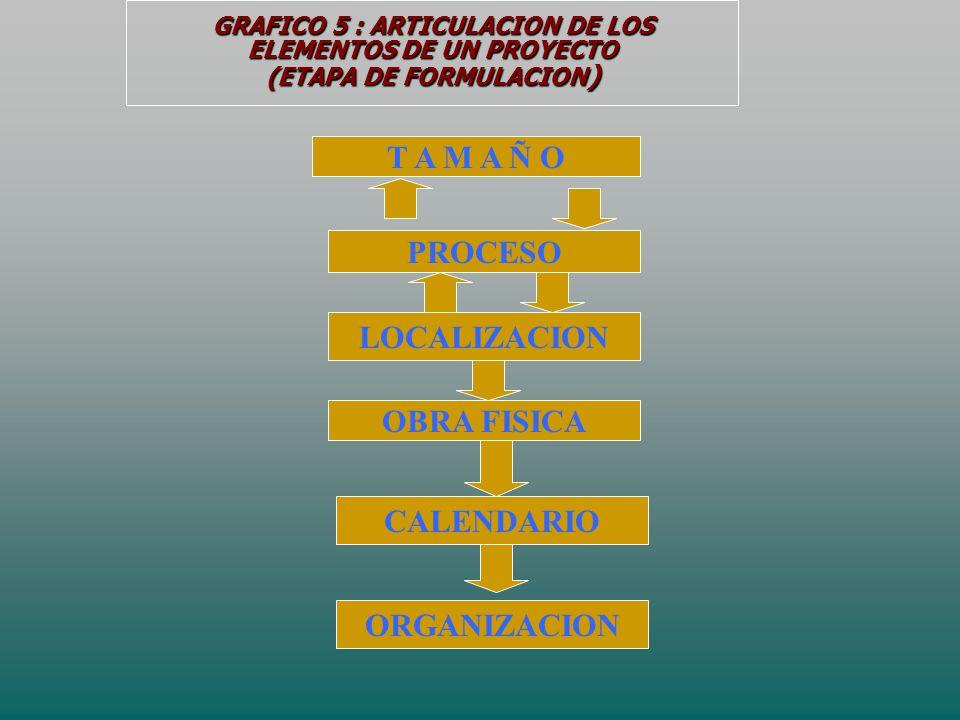 GRAFICO 5 : ARTICULACION DE LOS ELEMENTOS DE UN PROYECTO (ETAPA DE FORMULACION ) T A M A Ñ O PROCESO LOCALIZACION OBRA FISICA CALENDARIO ORGANIZACION