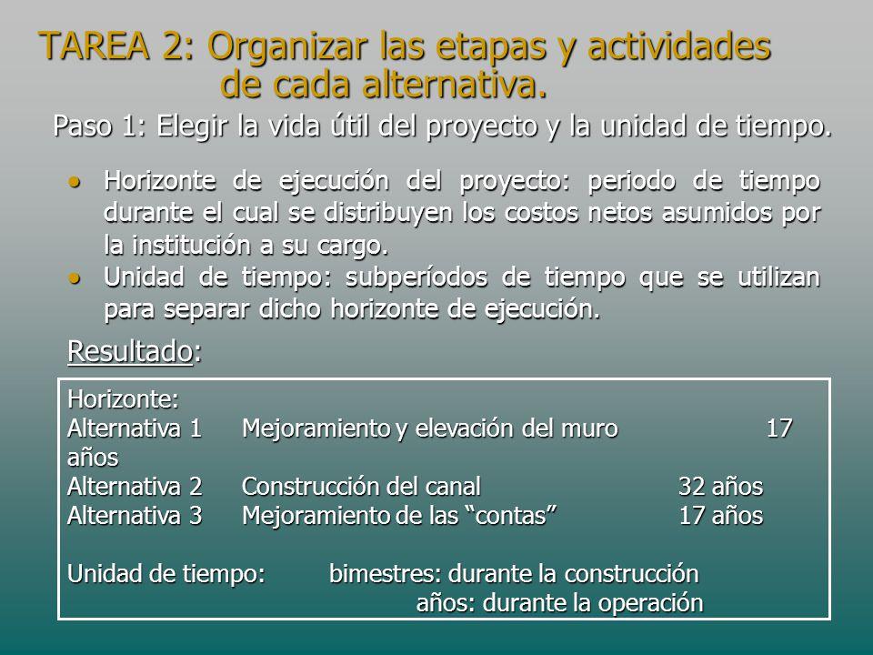 TAREA 2: Organizar las etapas y actividades de cada alternativa. Paso 1: Elegir la vida útil del proyecto y la unidad de tiempo. Horizonte: Alternativ