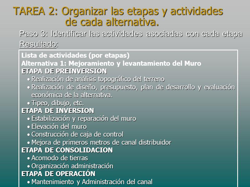 Paso 3: Identificar las actividades asociadas con cada etapa Resultado: Lista de actividades (por etapas) Alternativa 1: Mejoramiento y levantamiento