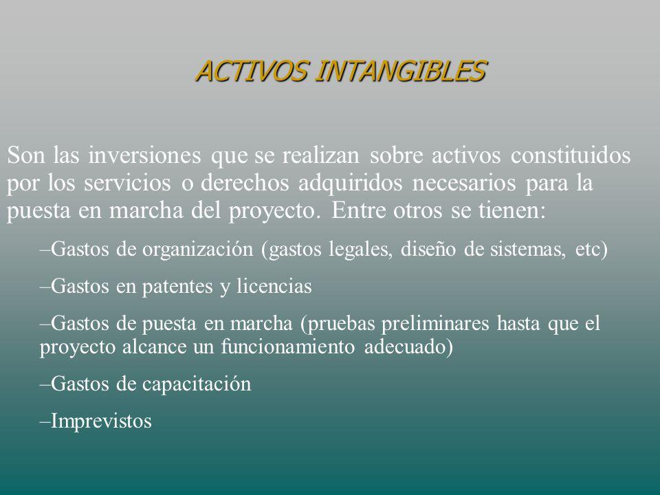 Son las inversiones que se realizan sobre activos constituidos por los servicios o derechos adquiridos necesarios para la puesta en marcha del proyect