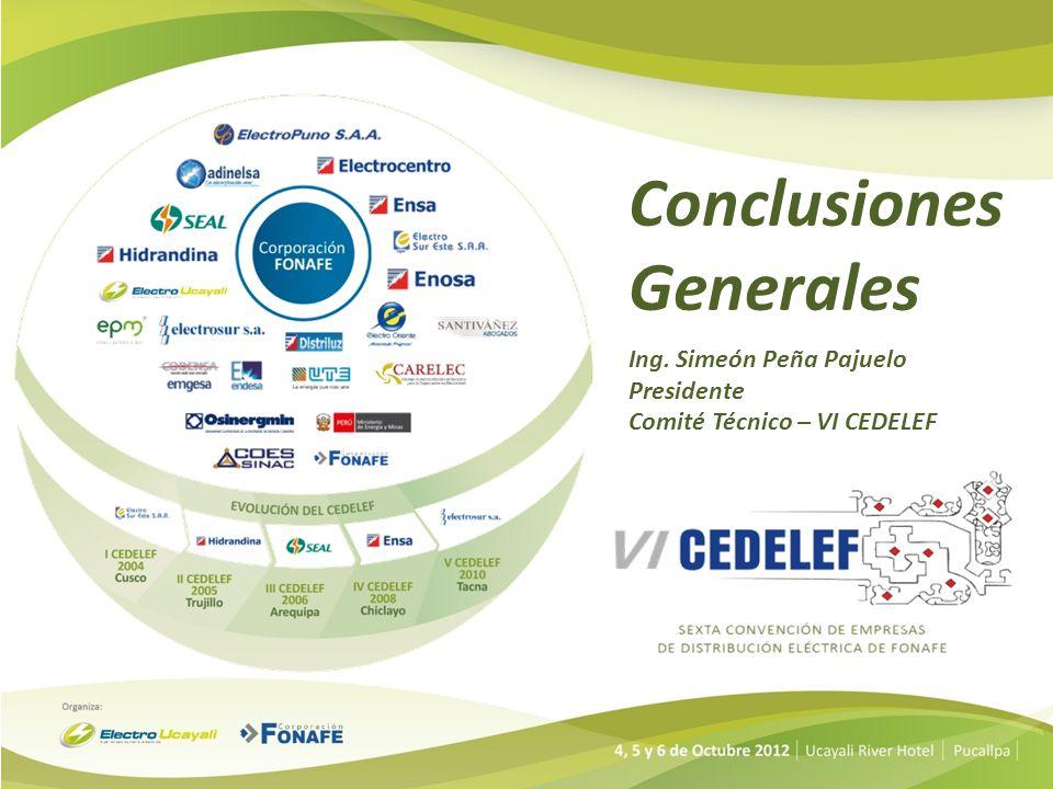 Conclusiones Generales 1)Se reafirma la necesidad que el CEDELEF tenga sostenibilidad y desarrollo en el tiempo así como de formar equipos de trabajo con participación de los profesionales mas destacados de las empresas distribuidoras para llevar adelante el desarrollo priorizado de los acuerdos adoptados, las acciones de seguimiento y de mejora correspondiente.