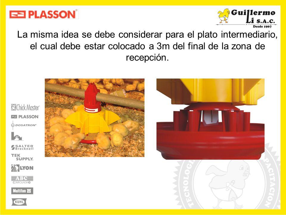 Es muy importante la colocación correcta de los tubos de caída con relación a las tolvas y a los sensores.