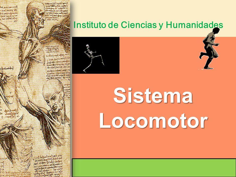 Instituto de Ciencias y Humanidades SistemaLocomotor