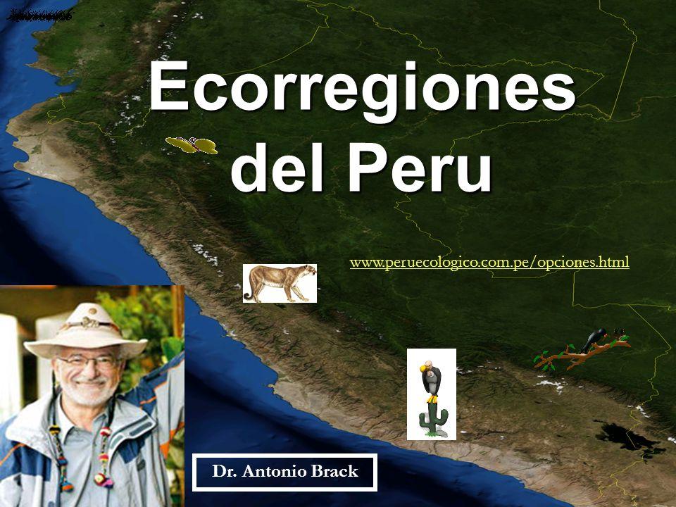 Ecorregiones del Peru Dr. Antonio Brack www.peruecologico.com.pe/opciones.html