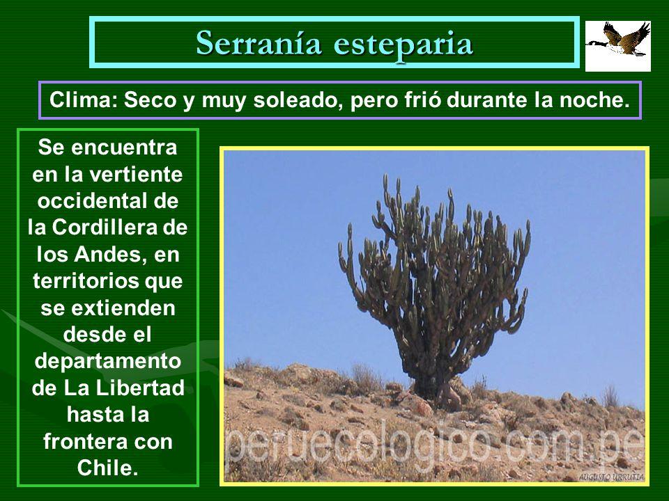Serranía esteparia Se encuentra en la vertiente occidental de la Cordillera de los Andes, en territorios que se extienden desde el departamento de La