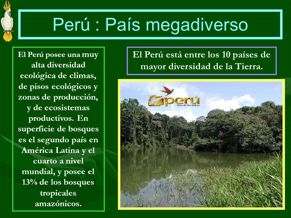 Perú : País megadiverso El Perú posee una muy alta diversidad ecológica de climas, de pisos ecológicos y zonas de producción, y de ecosistemas product