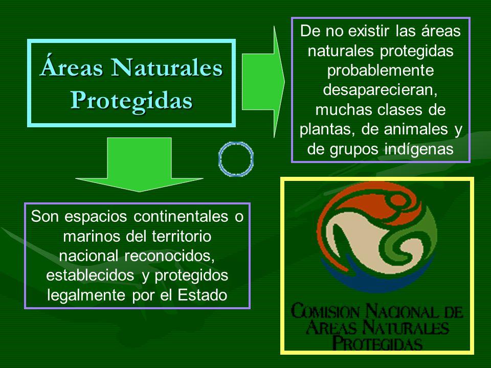Áreas Naturales Protegidas Son espacios continentales o marinos del territorio nacional reconocidos, establecidos y protegidos legalmente por el Estad