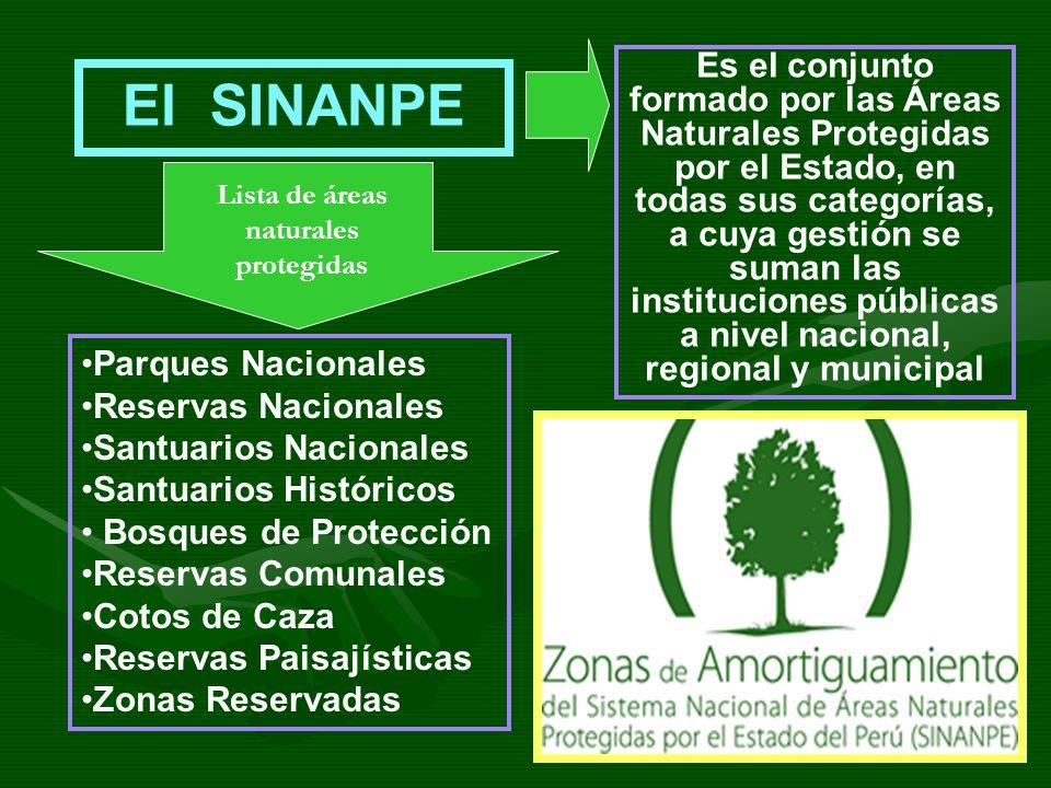 Es el conjunto formado por las Áreas Naturales Protegidas por el Estado, en todas sus categorías, a cuya gestión se suman las instituciones públicas a