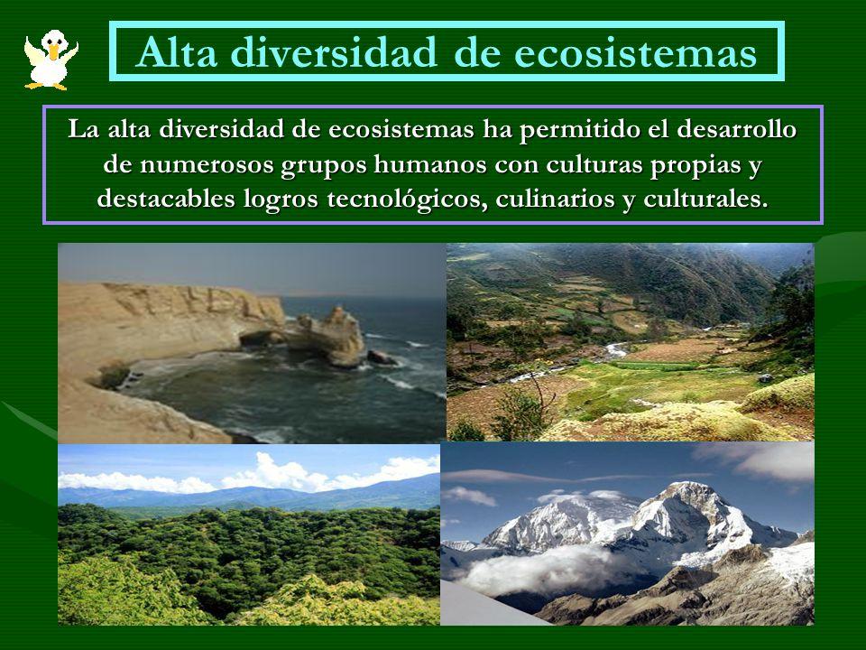 Alta diversidad de ecosistemas La alta diversidad de ecosistemas ha permitido el desarrollo de numerosos grupos humanos con culturas propias y destaca