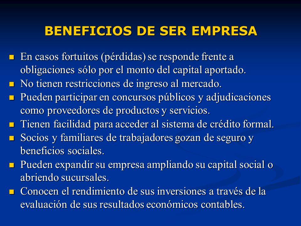 legales de constitucion de la empresa: