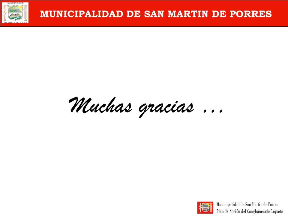 Municipalidad de San Martin de Porres Plan de Acción del Conglomerado Caquetá MUNICIPALIDAD DE SAN MARTIN DE PORRES Muchas gracias …