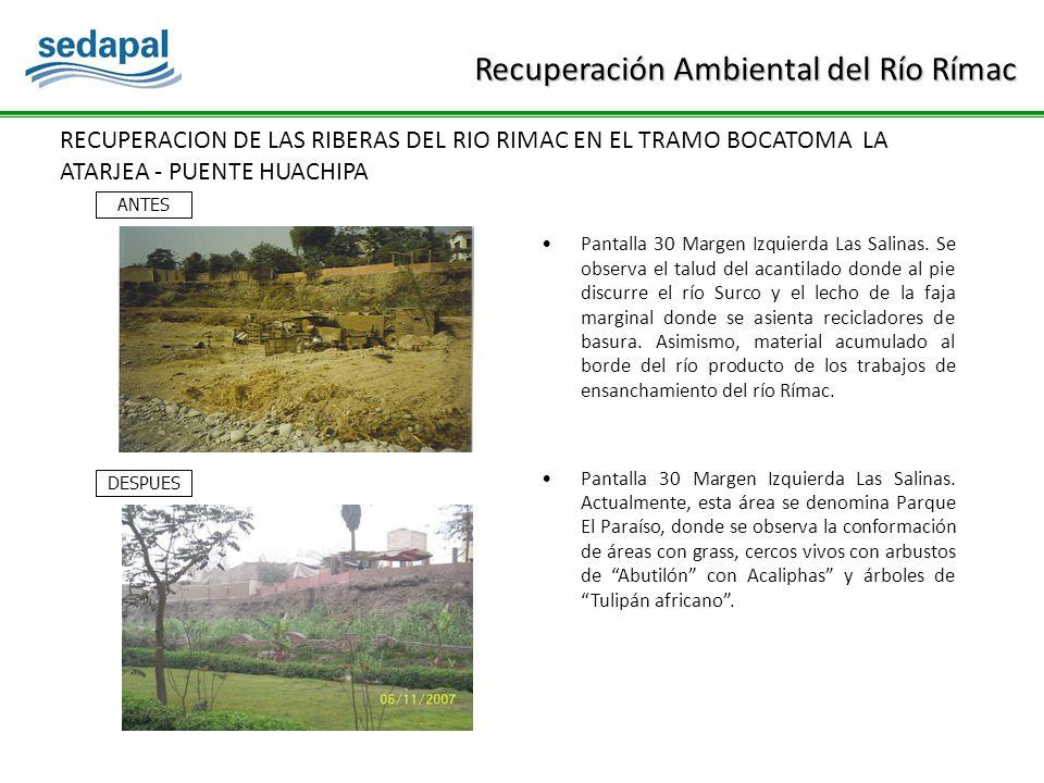 RECUPERACION DE LAS RIBERAS DEL RIO RIMAC EN EL TRAMO BOCATOMA LA ATARJEA - PUENTE HUACHIPA Pantalla 30 Margen Izquierda Las Salinas.