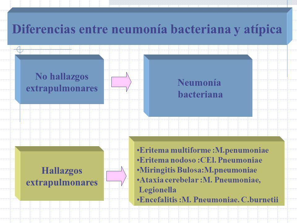 No hallazgos extrapulmonares Hallazgos extrapulmonares Neumonía bacteriana Eritema multiforme :M.penumoniae Eritema nodoso :CEl.