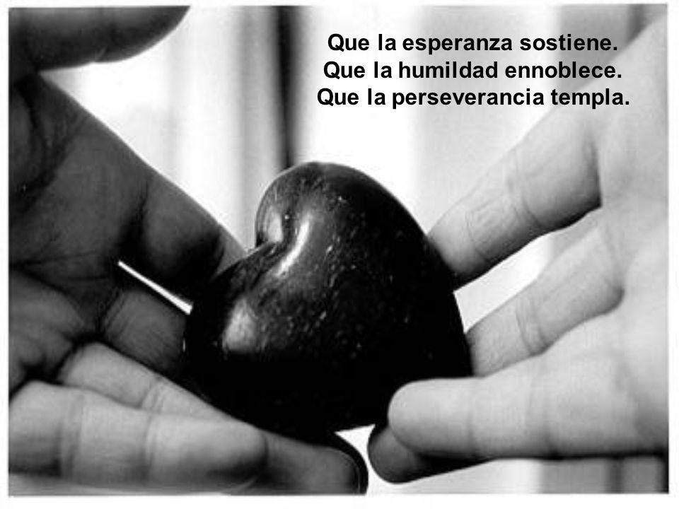 Que la esperanza sostiene. Que la humildad ennoblece. Que la perseverancia templa.