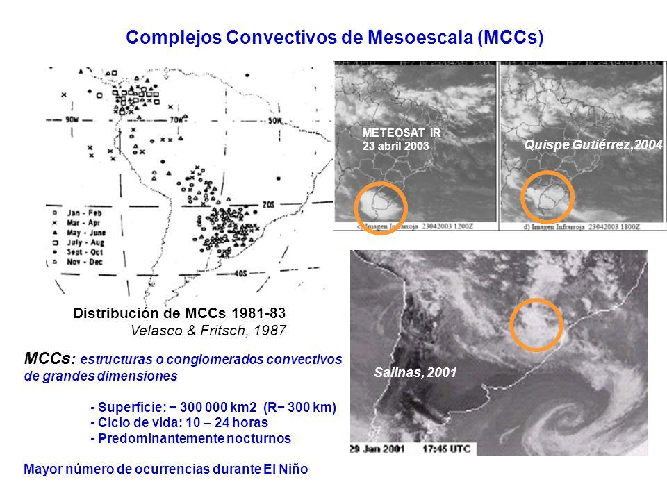 Complejos Convectivos de Mesoescala (MCCs) Quispe Gutiérrez,2004 Distribución de MCCs 1981-83 Velasco & Fritsch, 1987 MCCs: estructuras o conglomerado