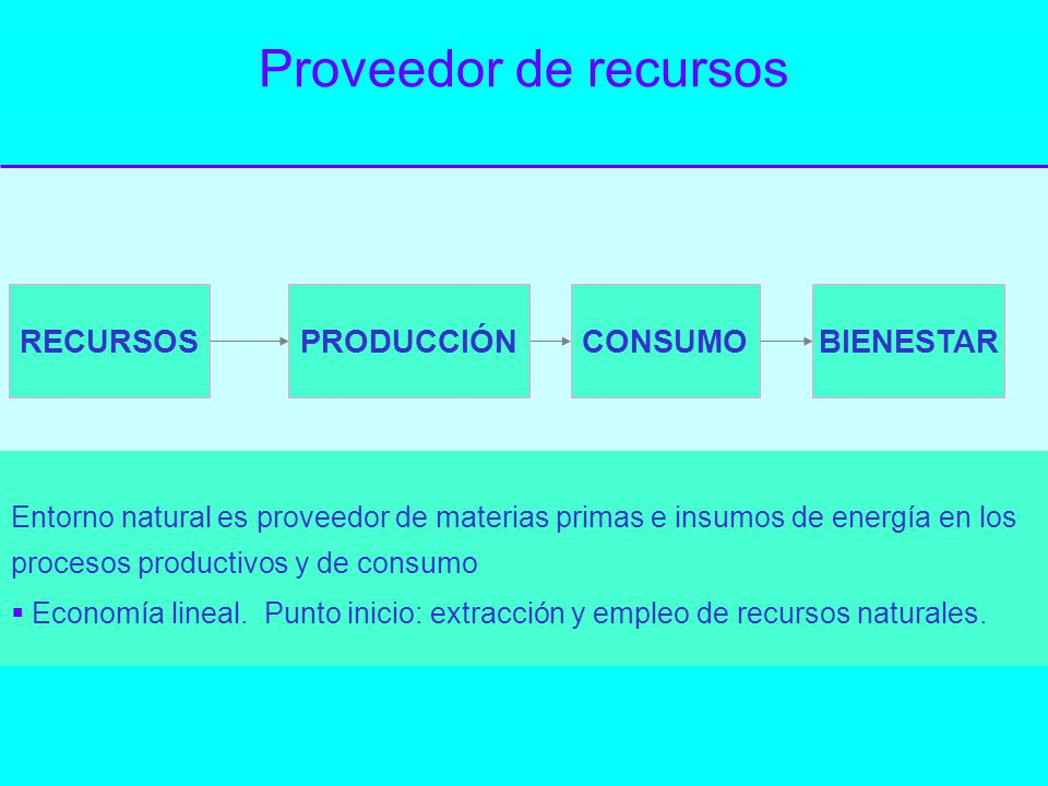 Proveedor de recursos RECURSOSPRODUCCIÓNCONSUMOBIENESTAR Entorno natural es proveedor de materias primas e insumos de energía en los procesos producti