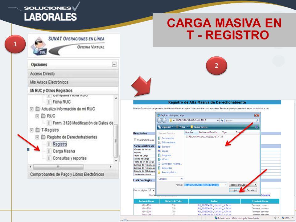 CARGA MASIVA EN T - REGISTRO 1 1 2 2