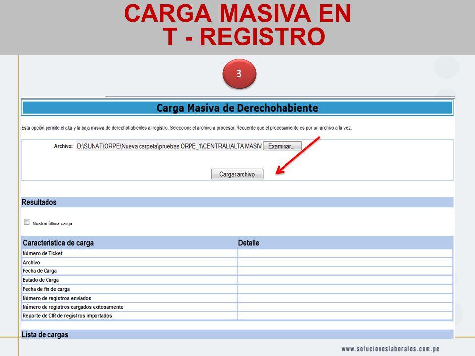 CARGA MASIVA EN T - REGISTRO 3 3