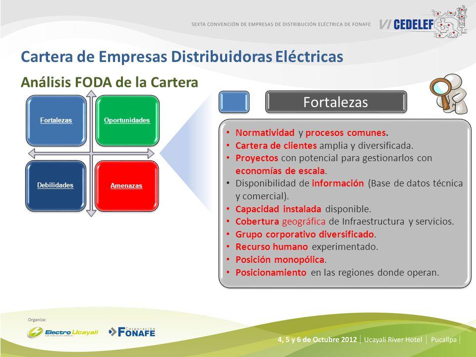 Cartera de Empresas Distribuidoras Eléctricas Análisis FODA de la Cartera Normatividad y procesos comunes. Cartera de clientes amplia y diversificada.