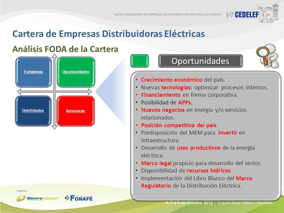 Cartera de Empresas Distribuidoras Eléctricas Análisis FODA de la Cartera Crecimiento económico del país. Nuevas tecnologías: optimizar procesos inter