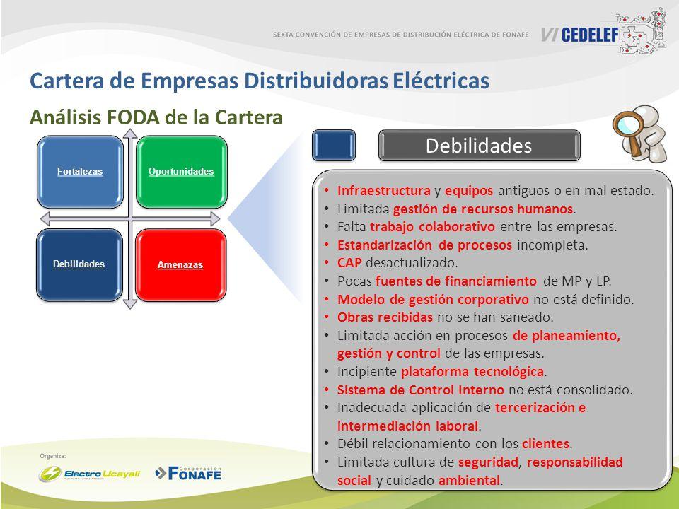 Cartera de Empresas Distribuidoras Eléctricas Análisis FODA de la Cartera Infraestructura y equipos antiguos o en mal estado. Limitada gestión de recu
