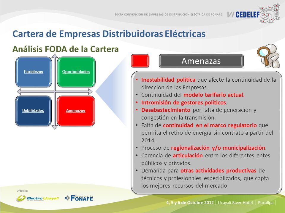 Cartera de Empresas Distribuidoras Eléctricas Análisis FODA de la Cartera Inestabilidad política que afecte la continuidad de la dirección de las Empr